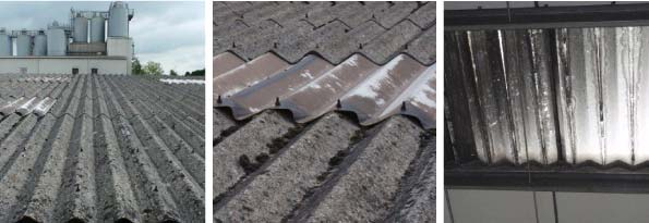 Belmont Roofings Projects - Belmont Roofing Industrial