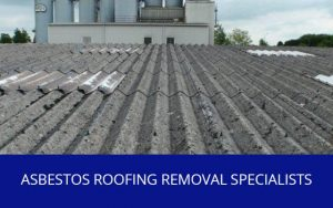 Service Asbestos Roofing Removal