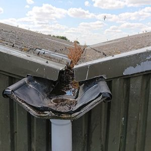 an Old Neglected Roof and Gutter