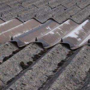 Belmont Roofing Ardex UK Limited Moss Covered Roof